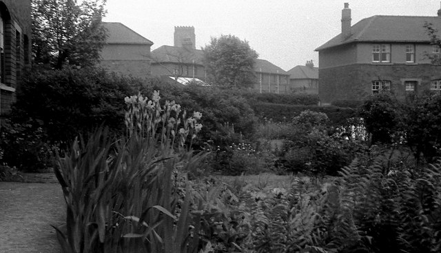Alverthorpe council houses and St Paul's Church tower, 1959