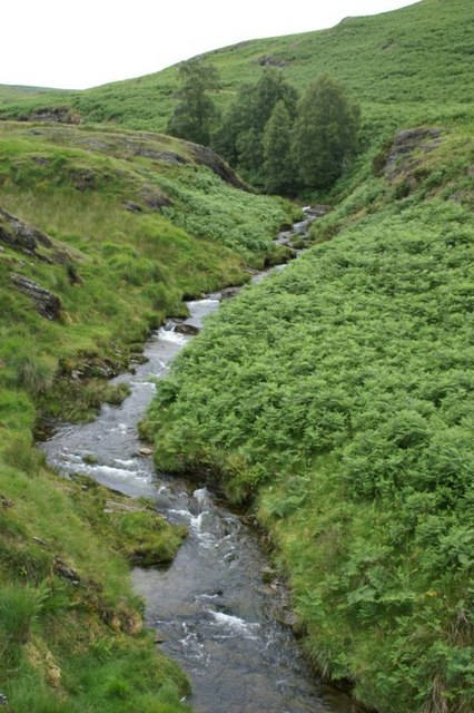 Stream flowing into Craig Goch reservoir
