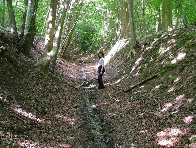 The Ridgeway in a ditch