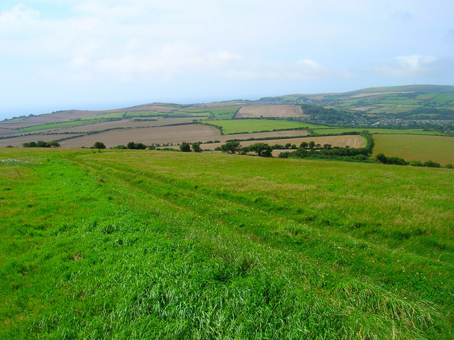 Bridleway to Nettlecombe