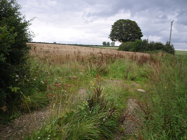 Field near Hill Barn Farm