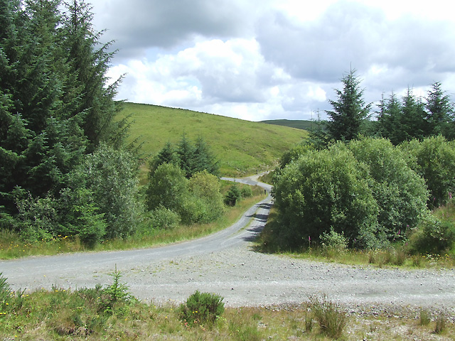 Forest Roads near Esgair Llethr, Ceredigion