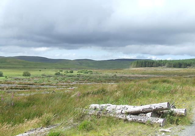 Landscape near the Source of Afon Brefi, Ceredigion