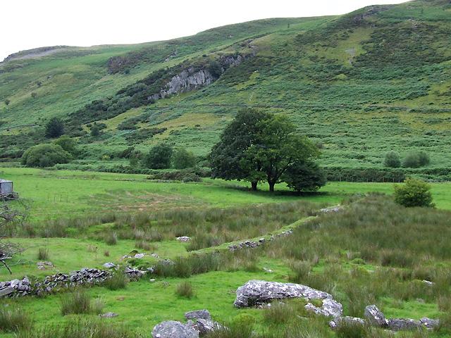 Pasture and hillside in Cwm Brefi, Ceredigion
