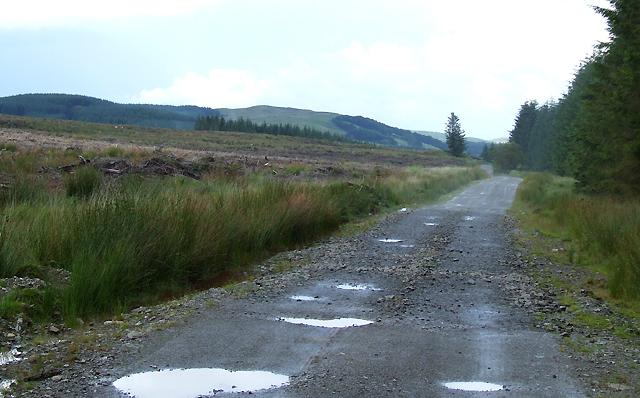 Forestry road, below Esgair Maen, Ceredigion