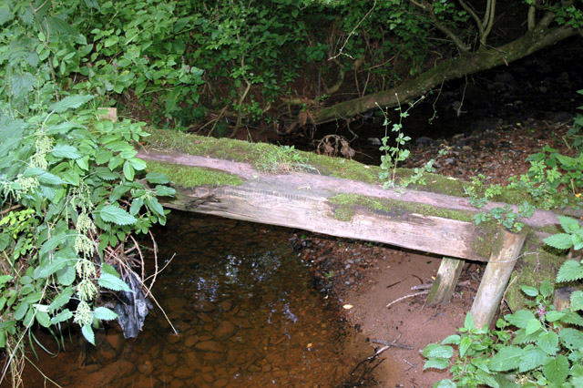 Small timber footbridge crosses tributary to Roe Beck