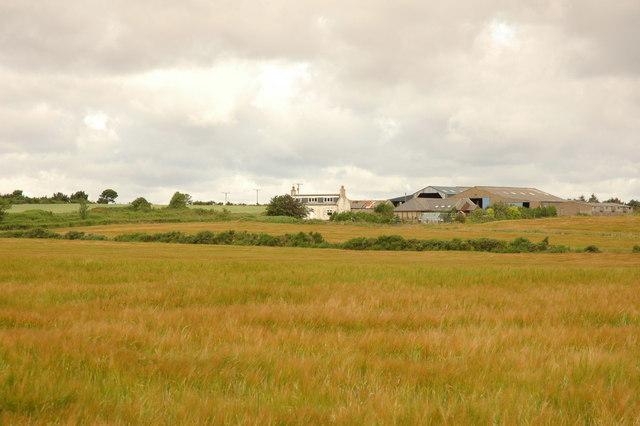 Backhill Farm
