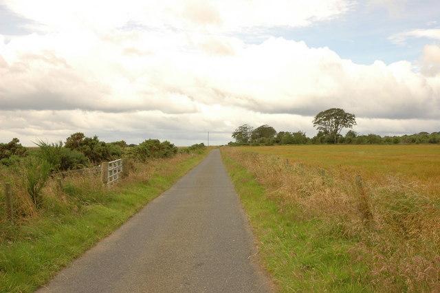 Country road near Backhill Farm