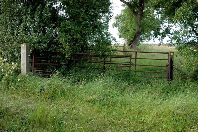 Y-junction of bridleway and footpath