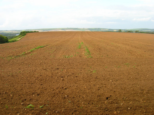 Ploughed Field near Froghill Farm