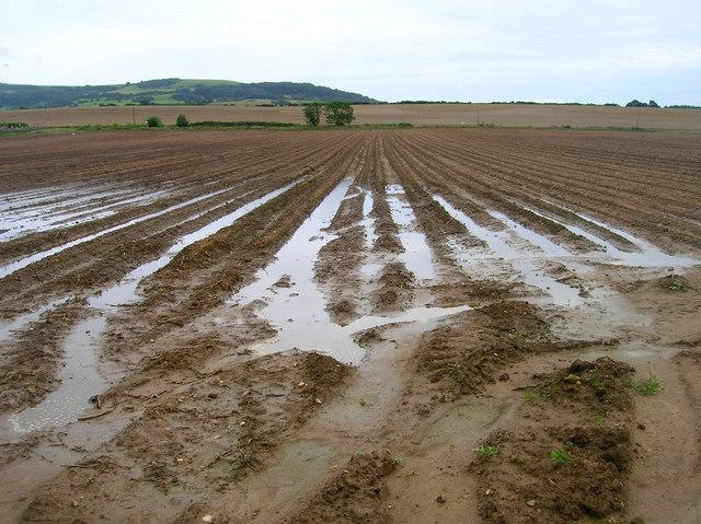Ploughed Field, Rill Farm