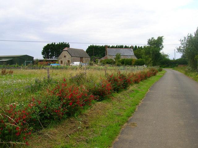 Bachelors Farm