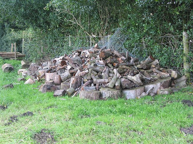 Timber pile in the orchard