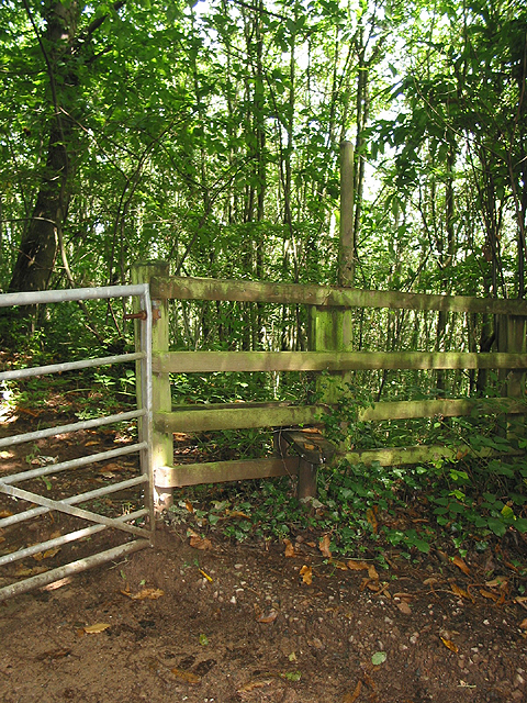 Stile in the woodland on The Penyard