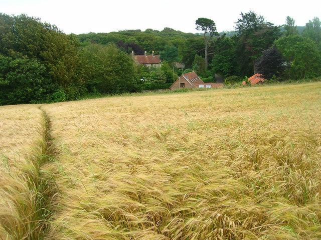 Apse Manor Farm