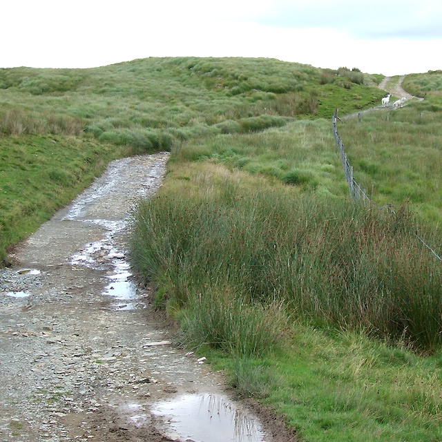Old Drover's Road towards Soar-y-Mynydd, Ceredigion