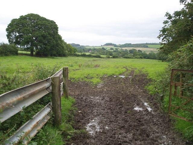 Field near Woolminstone