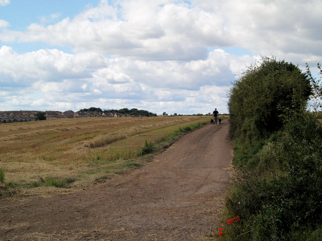 Haids lane going North from Braithwell Road.