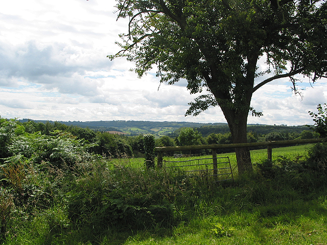 View towards the Forest of Dean from Penyard Hill
