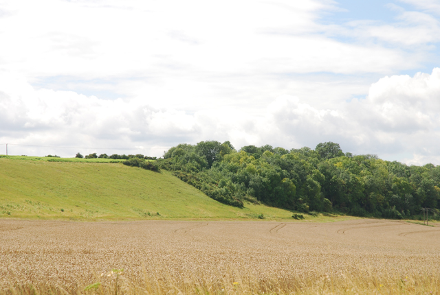 Edge of Ashley Hill