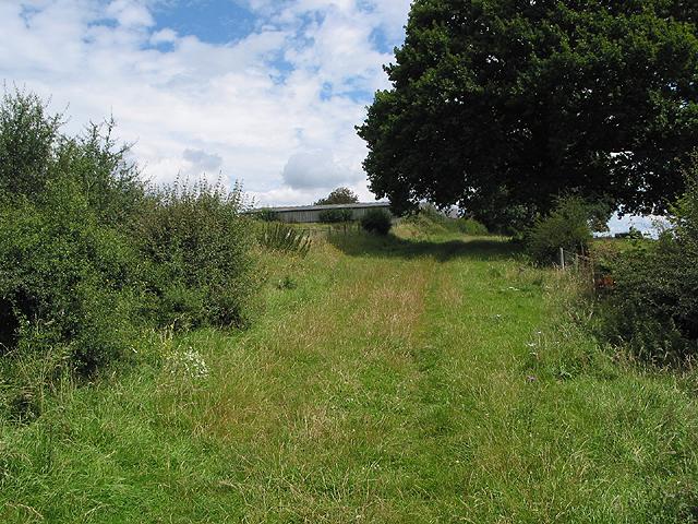 Track to Lawns Farm, Penyard Hill