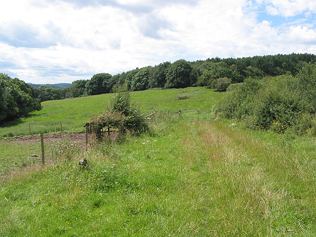 Footpath near Lawns Farm