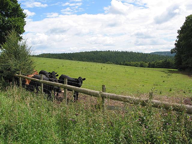 View near Lawns Farm...