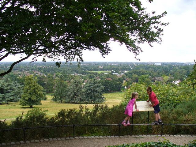 Henry VIII's Mound