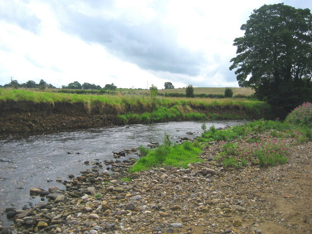 River Laver at Clotherholme