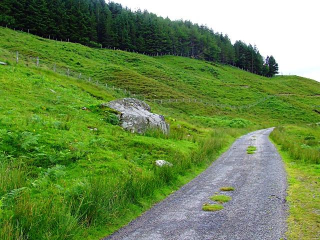 Plantation on the Hope Road