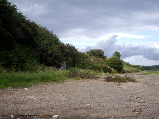 Beach at Dungeon Point, Mersey Estuary