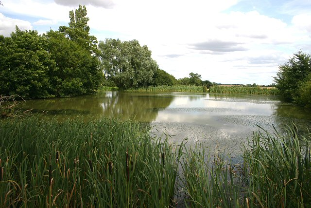 Sturmer Hall pond