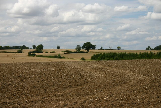 Farmland near Steeple Bumpstead