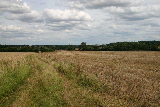 Bridleway to Ridgewell