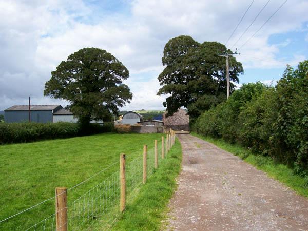 Track to Glan Ynys