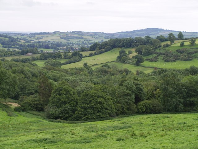 Valley above Woolminstone
