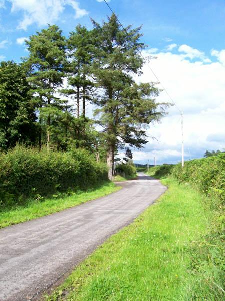 Road near Tal-y-Garn