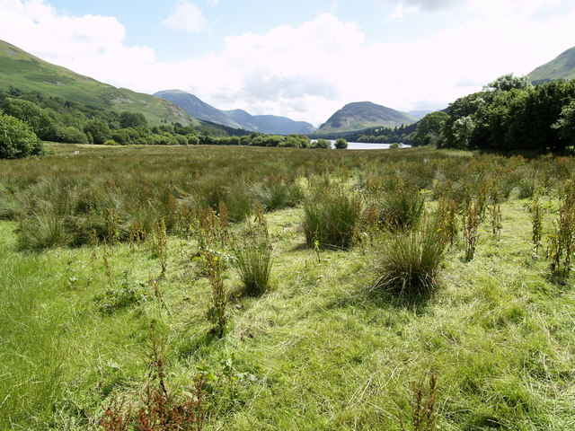 Marshland north west of Loweswater