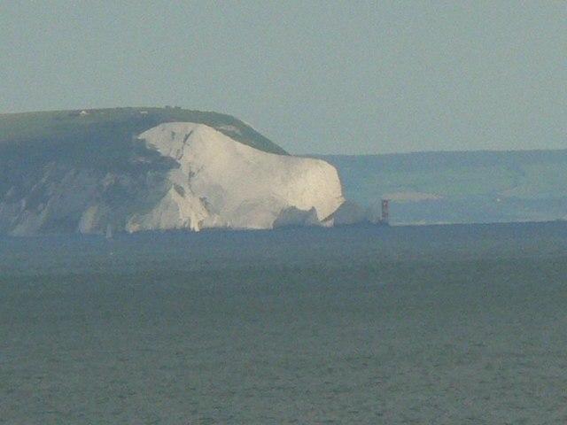 The Isle of Wight polar bear