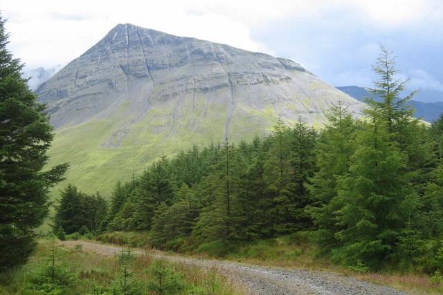 Track in Glen Brittle Forest