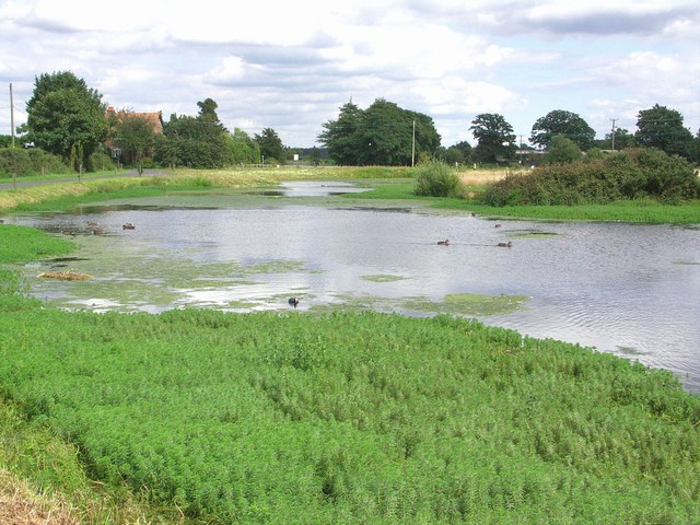 Pond at Parley Green