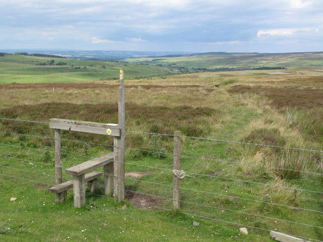Footpath to Beldon Cleugh