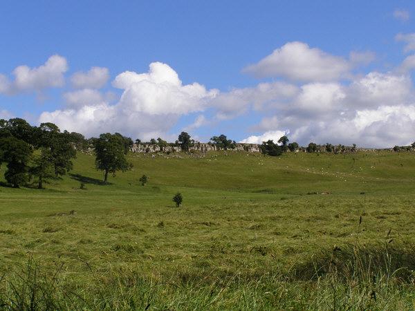 Parkland & Limestone Bluff