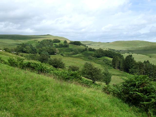 Elenydd Hill Farmland, Ceredigion