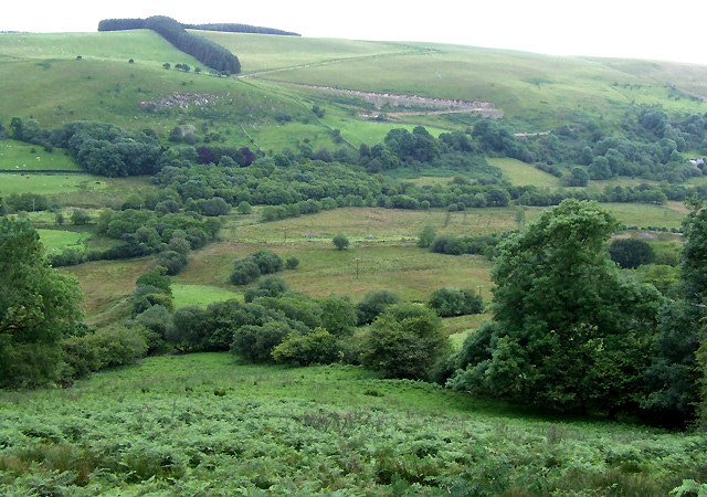 Across the Valley to Esgair Hendre, Carmarthenshire