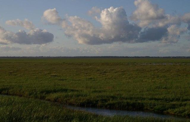 Crossens Marsh