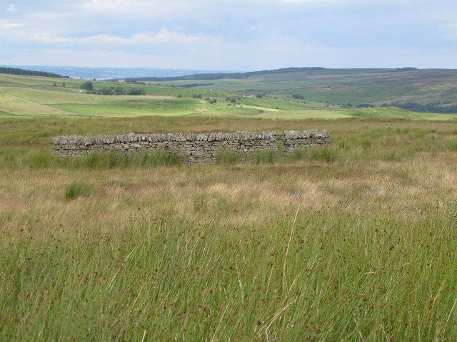 Sheepfold (2)