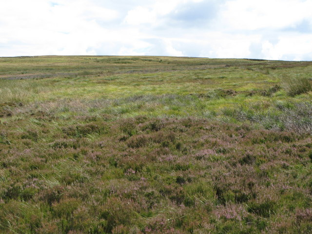 Harwoodshield Fell (3)