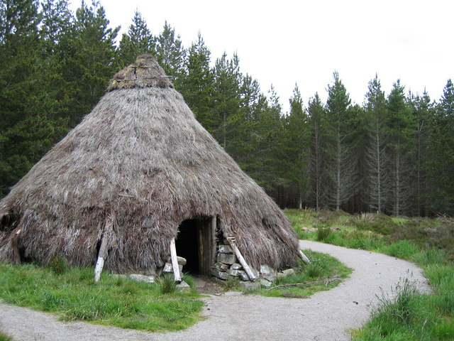 Abriachan community forest