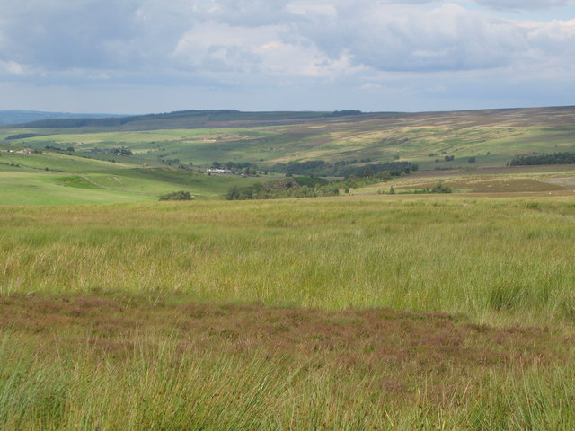 Harwoodshield Fell (5)